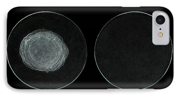 Evaporites Of Hard And Distilled Water IPhone Case by Science Photo Library
