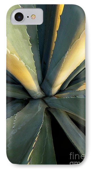 Evening Agave IPhone Case by Ellen Cotton