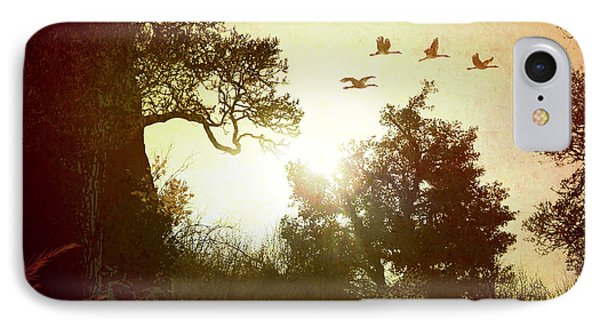 Evening Flying Geese Phone Case by Peter Awax