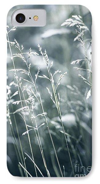 Evening Grass Flowering IPhone Case