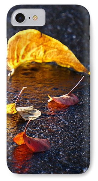 Evening Leaves On Wet Pavement Phone Case by Ronda Broatch