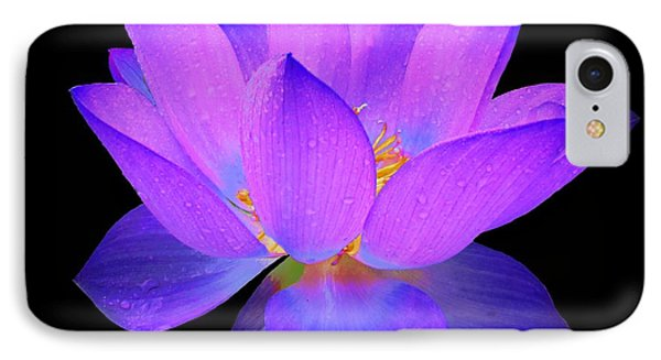 Evening Purple Lotus  IPhone Case by David Dehner