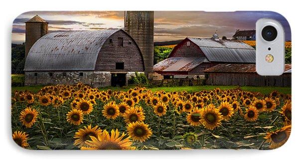 Evening Sunflowers Phone Case by Debra and Dave Vanderlaan
