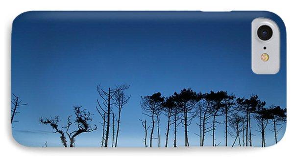 Evening Tree Blues IPhone Case by Csilla Szabo