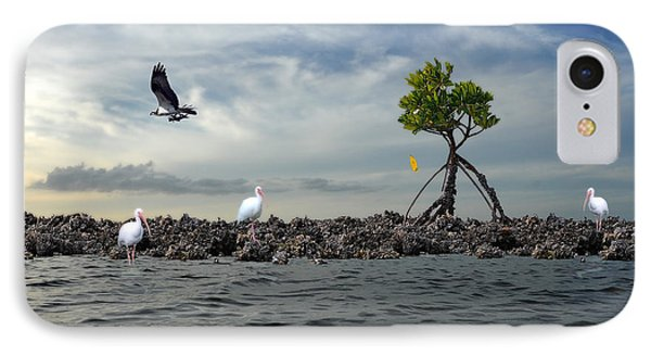 IPhone Case featuring the photograph Everglade Scene by Dan Friend