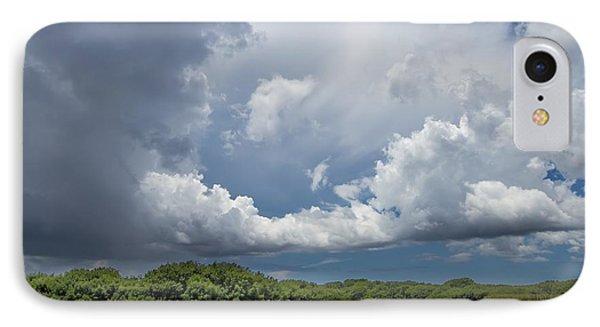 Everglades 0257 IPhone Case