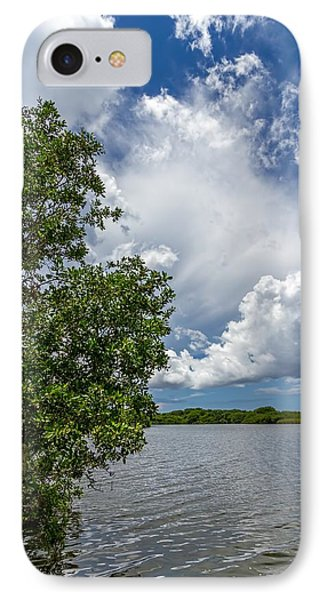 Everglades 0266 IPhone Case