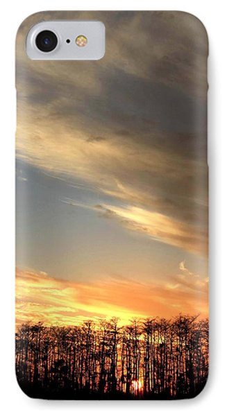 Everglades Clouds Phone Case by AR Annahita