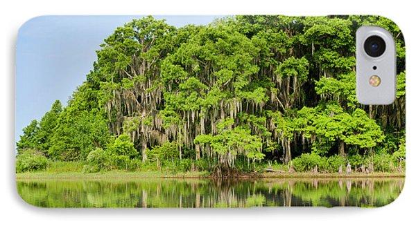Everglades Florida IPhone Case by Michael Defreitas