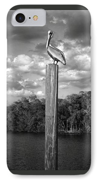 Everglades Pelican IPhone Case by Timothy Lowry