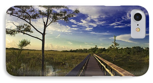 Everglades  IPhone Case by Swank Photography