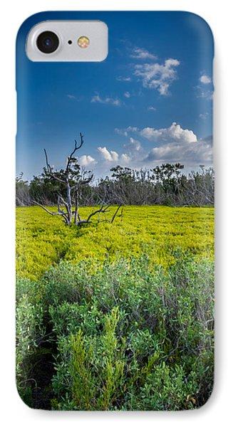Everglades Tree IPhone Case