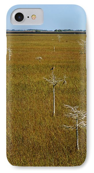 Everglades View IPhone Case