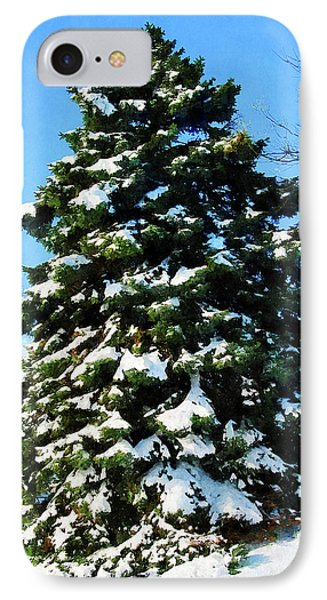 Evergreen In Winter Phone Case by Susan Savad