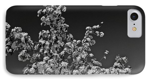 Evergreen Pear Bw IPhone Case