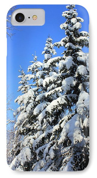 Evergreen Trees In Winter IPhone Case by Jim Sauchyn