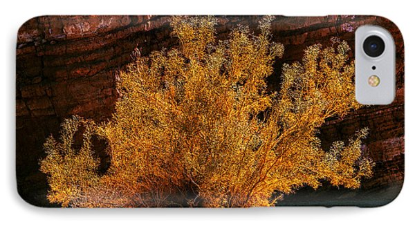 IPhone Case featuring the photograph Every Common Bush by Jeremy McKay