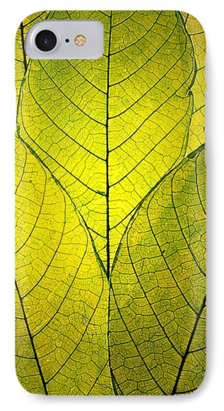 Every Leaf A Flower IPhone Case by Robin Dickinson