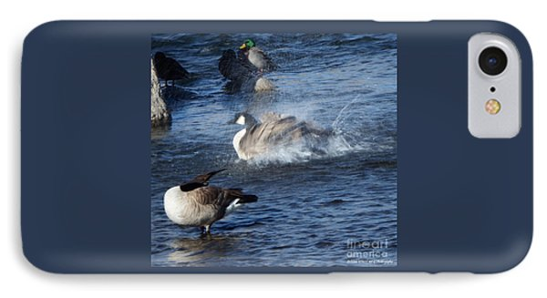 Everyone Duck IPhone Case by Bobbee Rickard
