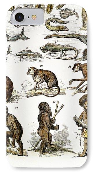 Evolution Chart Phone Case by Granger