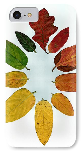 IPhone Case featuring the digital art Evolution Of Autumn Wh by Pete Trenholm