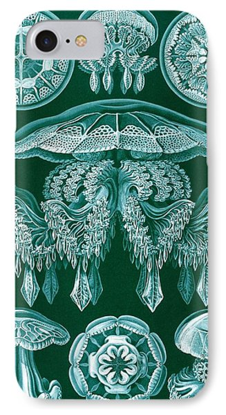 Examples Of Discomedusae IPhone Case by Ernst Haeckel