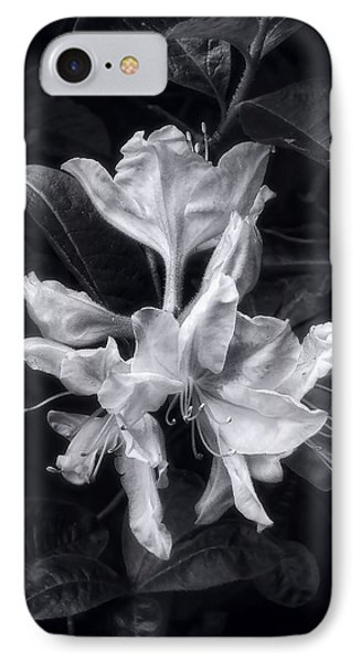 Exbury Azalea In Black And White IPhone Case by Louise Kumpf