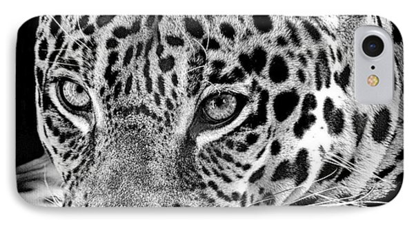IPhone Case featuring the photograph Exotic Jaguar by Ruth Jolly