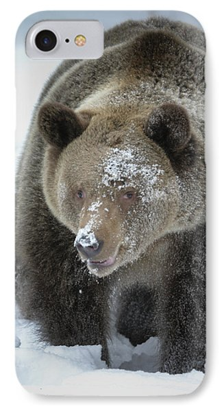 Eye Of Grizzly IPhone Case by Diane Bohna