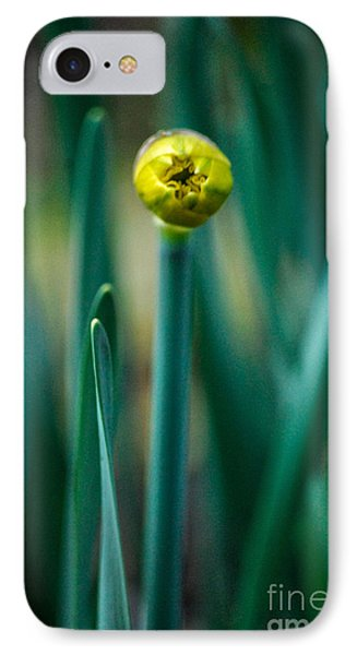 Eye Of The Daffodil IPhone Case by Cynthia Lagoudakis