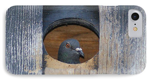 IPhone Case featuring the photograph Eye Of The Eye by Debby Pueschel