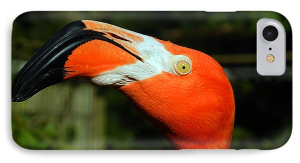 IPhone Case featuring the photograph Eye Of The Flamingo by Bill Swartwout