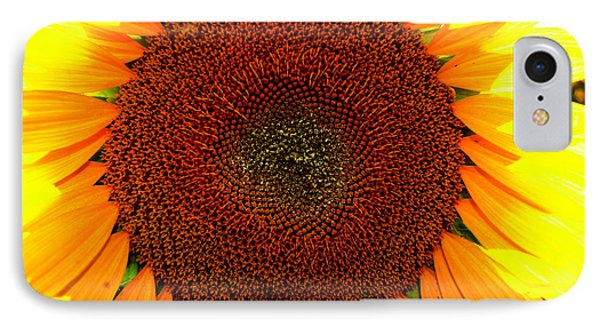 IPhone Case featuring the photograph Eye Of The Flower 4 by Lyle Crump