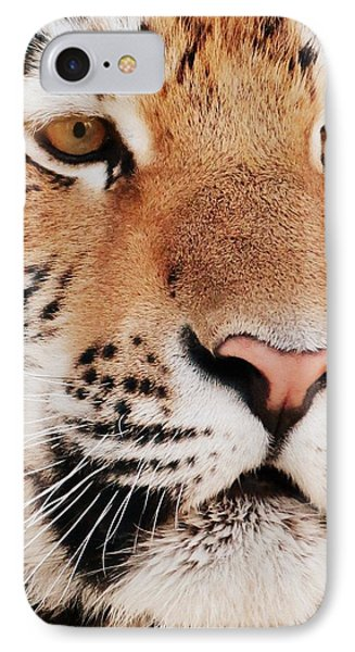 Eye Of The Tiger Phone Case by Ramona Johnston
