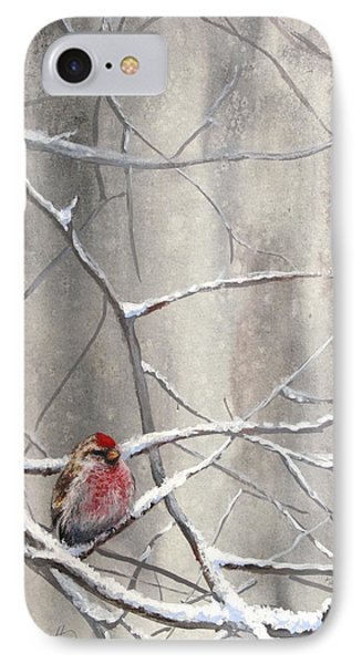 Eyeing The Feeder Alaskan Redpoll In Winter IPhone Case by Karen Whitworth