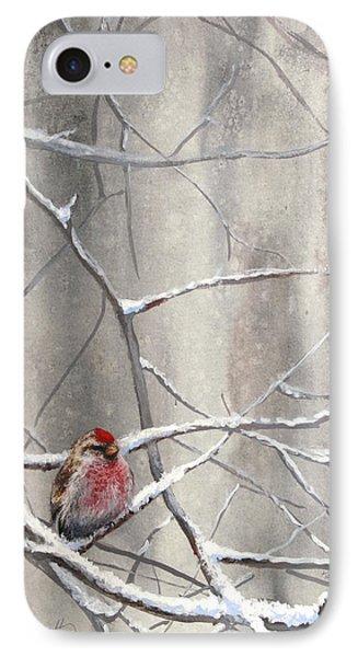 Eyeing The Feeder Alaskan Redpoll In Winter IPhone Case