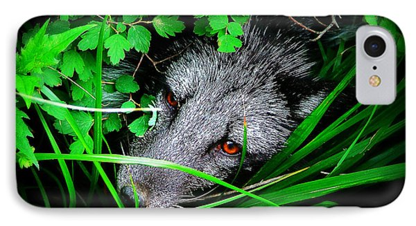 Eyes In The Bushes IPhone Case by Zinvolle Art