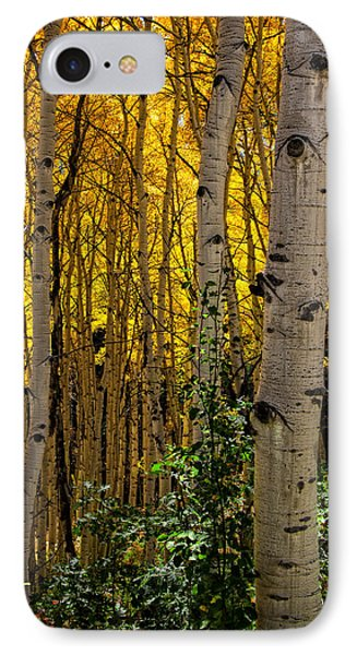 IPhone Case featuring the photograph Eyes Of The Forest by Ken Smith