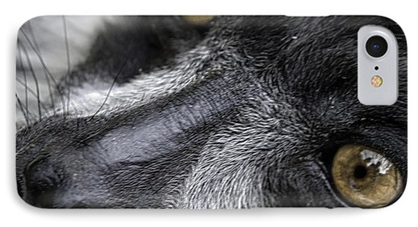 Eyes Of The Lemur IPhone Case by Chris Boulton