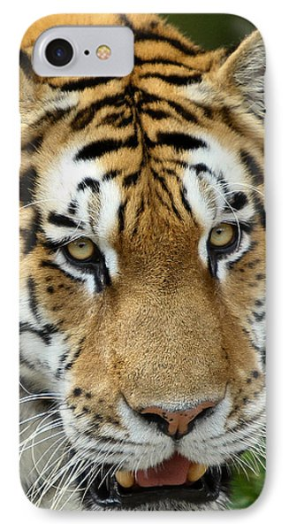 IPhone Case featuring the photograph Eyes Of The Tiger by John Haldane