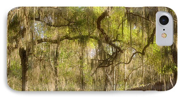 Fabulous Spanish Moss Phone Case by Christine Till