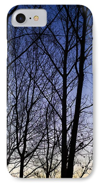 IPhone Case featuring the photograph Fading Light Through The Sycamore Trees by Micah Goff