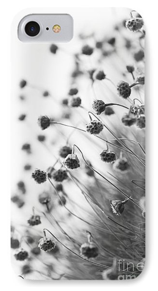 Fading Thrift Phone Case by Anne Gilbert
