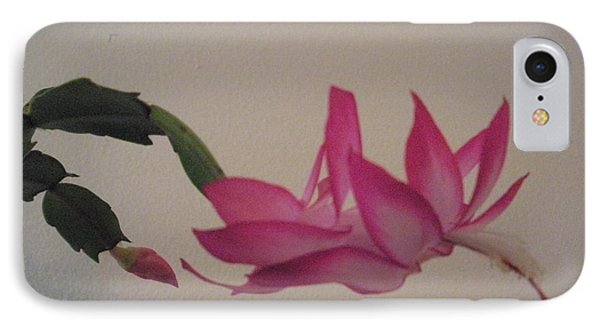 IPhone Case featuring the photograph Fairy Blossom by Jeanette French