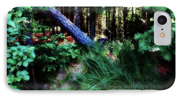 IPhone Case featuring the photograph Fairy Forest by Jamie Lynn