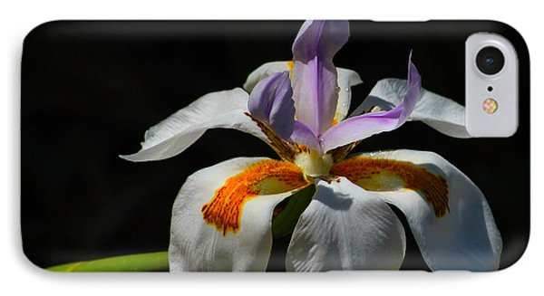 Fairy Iris IPhone Case by Richard Stephen