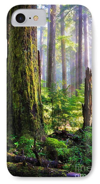 Fairy Tale Forest Phone Case by Inge Johnsson
