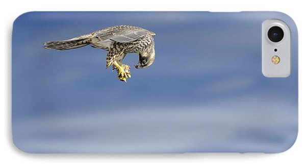 Falcon With Prey IPhone Case