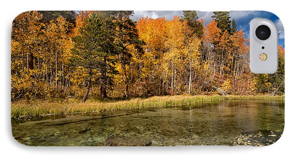 Fall Along Bishop Creek Phone Case by Cat Connor