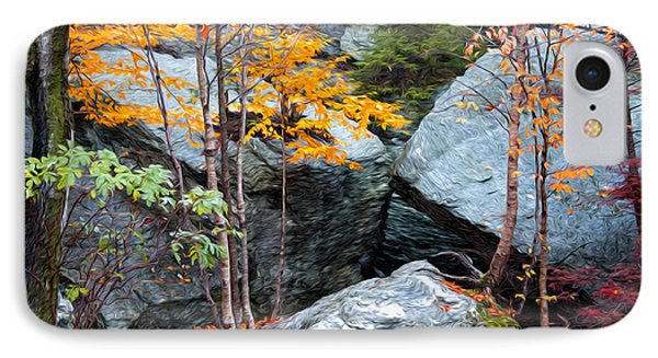IPhone Case featuring the photograph Fall Among The Rocks by Bill Howard